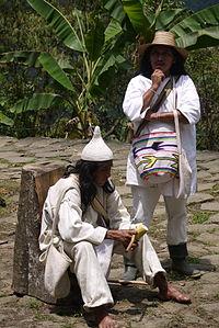 indigenous_koguis_shaman-1